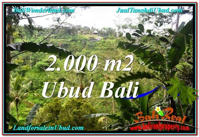 Exotic UBUD BALI 2,000 m2 LAND FOR SALE TJUB573