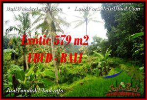FOR SALE Magnificent PROPERTY 579 m2 LAND IN Ubud Tegalalang TJUB538