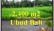 Magnificent PROPERTY LAND FOR SALE IN UBUD BALI TJUB563