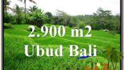 Ubud Tampak Siring BALI LAND FOR SALE TJUB564