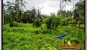 FOR SALE Affordable PROPERTY 1,000 m2 LAND IN UBUD BALI TJUB570
