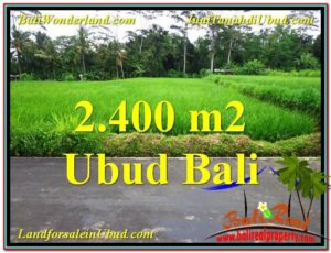 FOR SALE Magnificent PROPERTY 2,800 m2 LAND IN Ubud Tampak Siring TJUB563