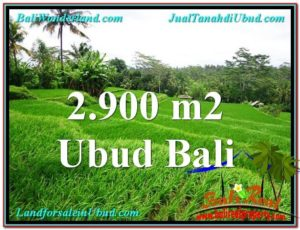 Exotic UBUD BALI 2,900 m2 LAND FOR SALE TJUB564