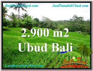Exotic UBUD BALI 2,900 m2 LAND FOR SALE TJUB564