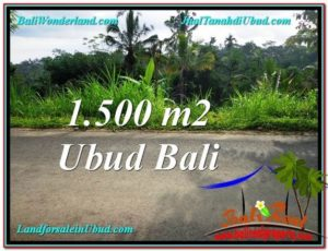 Affordable 1,500 m2 LAND SALE IN UBUD BALI TJUB556