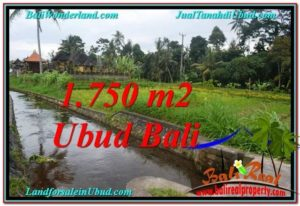 FOR SALE Exotic 715 m2 LAND IN UBUD BALI TJUB557