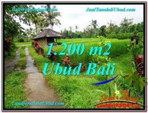 1,200 m2 LAND SALE IN UBUD BALI TJUB559