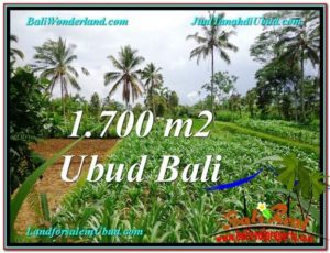 FOR SALE Affordable 1,700 m2 LAND IN UBUD BALI TJUB560