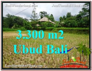 FOR SALE Affordable PROPERTY 3,300 m2 LAND IN UBUD BALI TJUB562