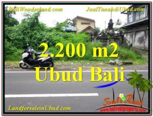 Affordable LAND IN UBUD FOR SALE TJUB565