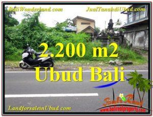 Affordable LAND IN UBUD FOR SALE TJUB565