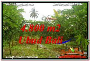 Exotic UBUD LAND FOR SALE TJUB571