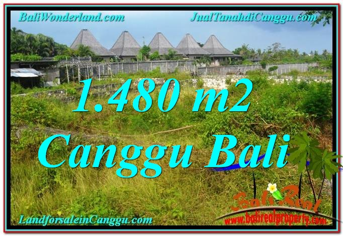 FOR SALE Beautiful PROPERTY LAND IN CANGGU BALI TJCG212