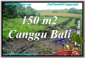 FOR SALE Magnificent PROPERTY 150 m2 LAND IN CANGGU TJCG213