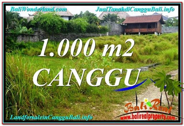 FOR SALE Exotic PROPERTY LAND IN CANGGU BALI TJCG214