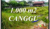 Exotic 1,000 m2 LAND FOR SALE IN CANGGU TJCG214
