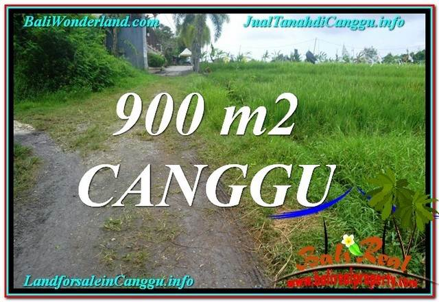 FOR SALE Magnificent PROPERTY 900 m2 LAND IN CANGGU TJCG215