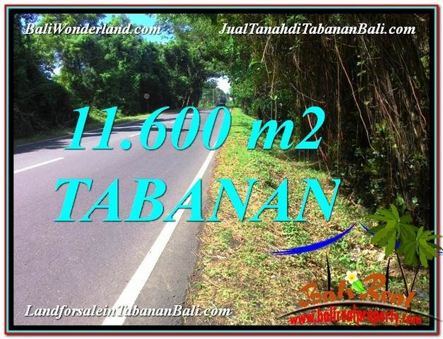 Beautiful PROPERTY 11,600 m2 LAND IN TABANAN BALI FOR SALE TJTB327