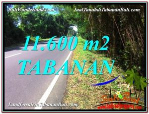 Magnificent PROPERTY TABANAN 11,600 m2 LAND FOR SALE TJTB327
