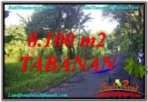 FOR SALE Affordable 8,100 m2 LAND IN Tabanan Marga BALI TJTB329