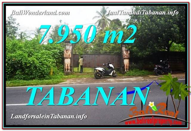 Exotic PROPERTY TABANAN 7,950 m2 LAND FOR SALE TJTB331