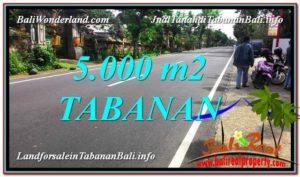 Affordable PROPERTY Badung LAND FOR SALE TJTB332