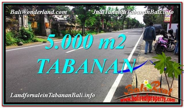 Beautiful PROPERTY 5,000 m2 LAND FOR SALE IN Badung BALI TJTB332