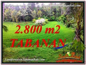 Exotic LAND FOR SALE IN TABANAN TJTB333