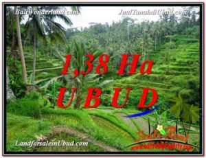 Magnificent PROPERTY 13,800 m2 LAND FOR SALE IN Ubud Tegalalang TJUB590