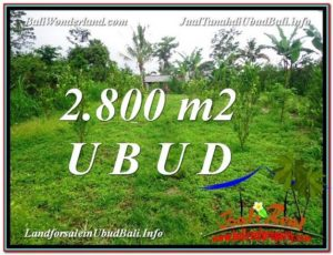 FOR SALE Exotic PROPERTY 2,800 m2 LAND IN UBUD BALI TJUB592