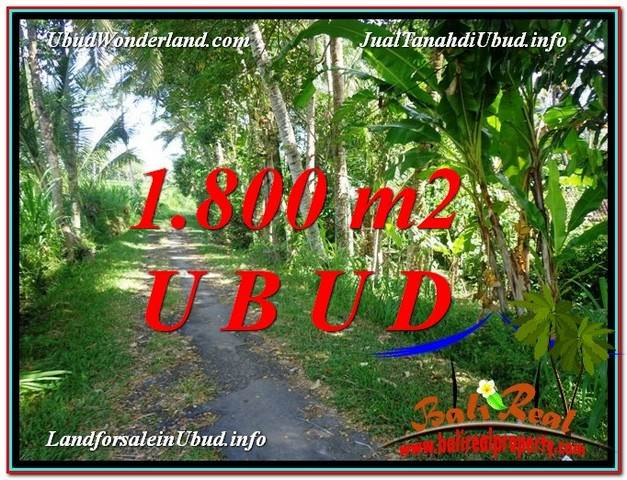 Affordable PROPERTY UBUD LAND FOR SALE TJUB597