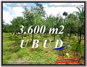 Beautiful UBUD LAND FOR SALE TJUB599