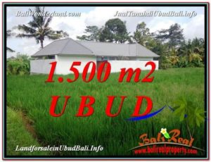 FOR SALE Affordable PROPERTY 1,500 m2 LAND IN UBUD BALI TJUB600