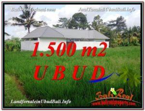 FOR SALE Affordable PROPERTY 1,500 m2 LAND IN UBUD BALI TJUB600