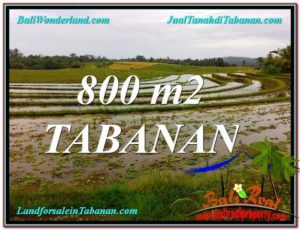 Beautiful PROPERTY TABANAN BALI 800 m2 LAND FOR SALE TJTB324