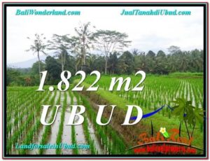 Magnificent 1,822 m2 LAND FOR SALE IN UBUD BALI TJUB574