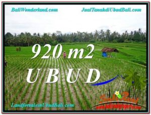 FOR SALE Beautiful 920 m2 LAND IN UBUD BALI TJUB575