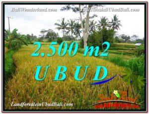 Affordable PROPERTY 2,500 m2 LAND FOR SALE IN Ubud Pejeng TJUB577