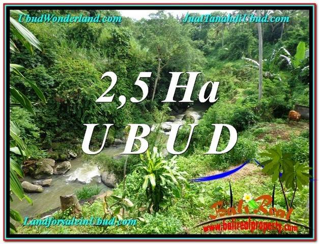 Magnificent 26,000 m2 LAND SALE IN UBUD BALI TJUB579