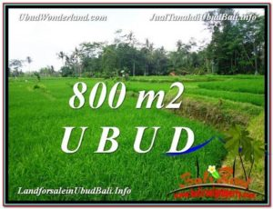 Beautiful PROPERTY 800 m2 LAND SALE IN Ubud Pejeng TJUB581
