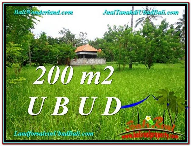 Exotic PROPERTY 200 m2 LAND SALE IN UBUD BALI TJUB584