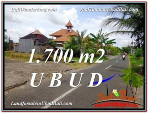 Exotic Sentral Ubud BALI LAND FOR SALE TJUB588