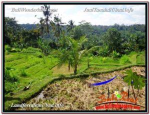 Exotic PROPERTY Ubud Payangan 15,600 m2 LAND FOR SALE TJUB601