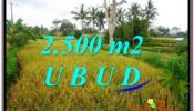 Affordable 2,500 m2 LAND SALE IN UBUD BALI TJUB577
