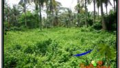 FOR SALE Exotic 26,000 m2 LAND IN UBUD BALI TJUB579