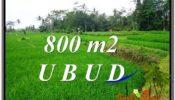 Beautiful 800 m2 LAND IN Ubud Pejeng FOR SALE TJUB581