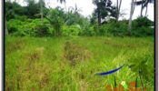 FOR SALE Affordable PROPERTY 200 m2 LAND IN UBUD BALI TJUB584