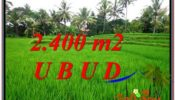 FOR SALE Magnificent PROPERTY 2,400 m2 LAND IN Sentral Ubud TJUB587