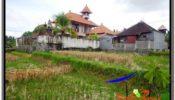 Magnificent PROPERTY 1,700 m2 LAND IN Sentral Ubud FOR SALE TJUB588
