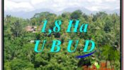 Beautiful PROPERTY 18,000 m2 LAND FOR SALE IN Ubud Tegalalang BALI TJUB589